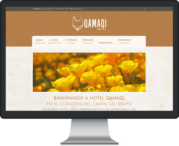 Website Qamaqi
